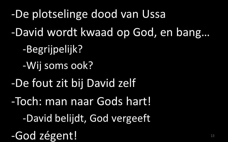 -De plotselinge dood van Ussa -David wordt kwaad op God, en bang… -Begrijpelijk.