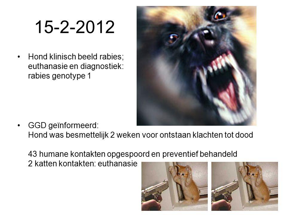 15-2-2012 Hond klinisch beeld rabies; euthanasie en diagnostiek: rabies genotype 1 GGD geïnformeerd: Hond was besmettelijk 2 weken voor ontstaan klachten tot dood 43 humane kontakten opgespoord en preventief behandeld 2 katten kontakten: euthanasie
