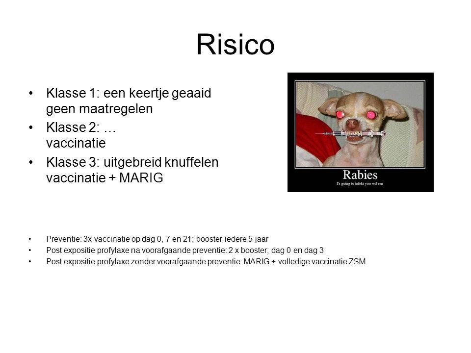 Risico Klasse 1: een keertje geaaid geen maatregelen Klasse 2: … vaccinatie Klasse 3: uitgebreid knuffelen vaccinatie + MARIG Preventie: 3x vaccinatie op dag 0, 7 en 21; booster iedere 5 jaar Post expositie profylaxe na voorafgaande preventie: 2 x booster; dag 0 en dag 3 Post expositie profylaxe zonder voorafgaande preventie: MARIG + volledige vaccinatie ZSM