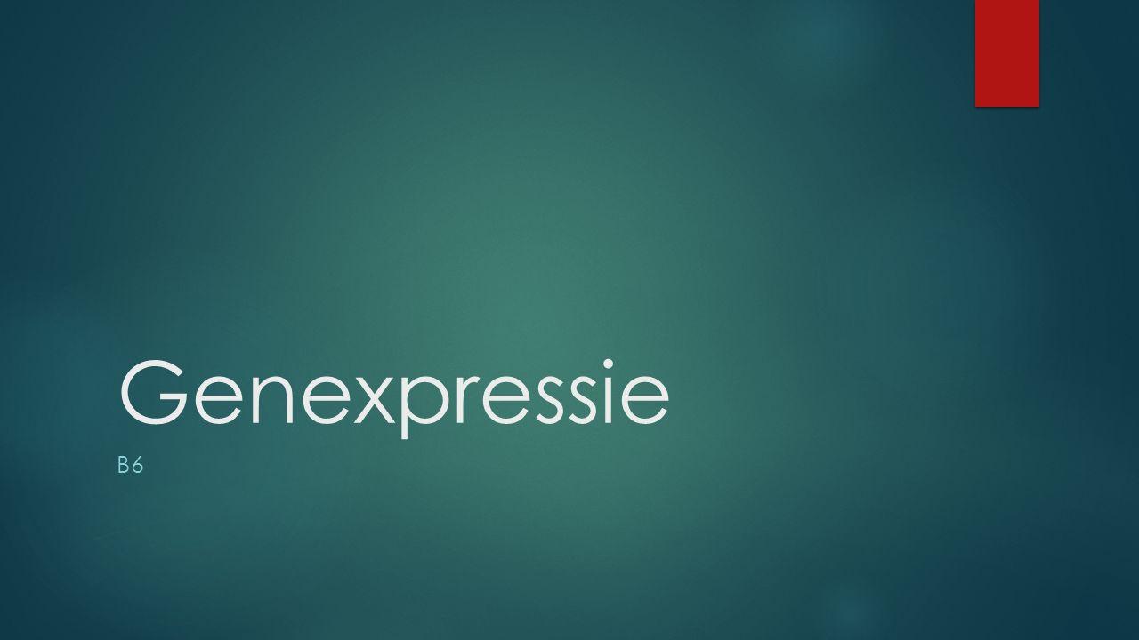 Genexpressie B6