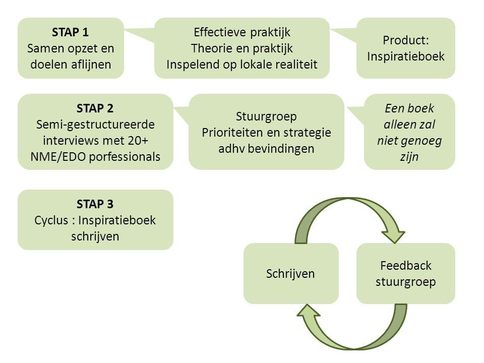 STAP 4 Praktijktoets Workshops : inhouden en doelgroepgerichtheid Samen met educatoren, gidsen en diensthoofden overheen partners Deel 1 -Aan de slag met theorie H2 -Lezen, interpreten en uitleggen aan elkaar -Feedback aan Edubron ivm doelgroepgerichtheid -Aanbrengen van praktijkvoorbeelden Deel 2 -Aan de slag met theorie H3 -Aanpassingen OK.