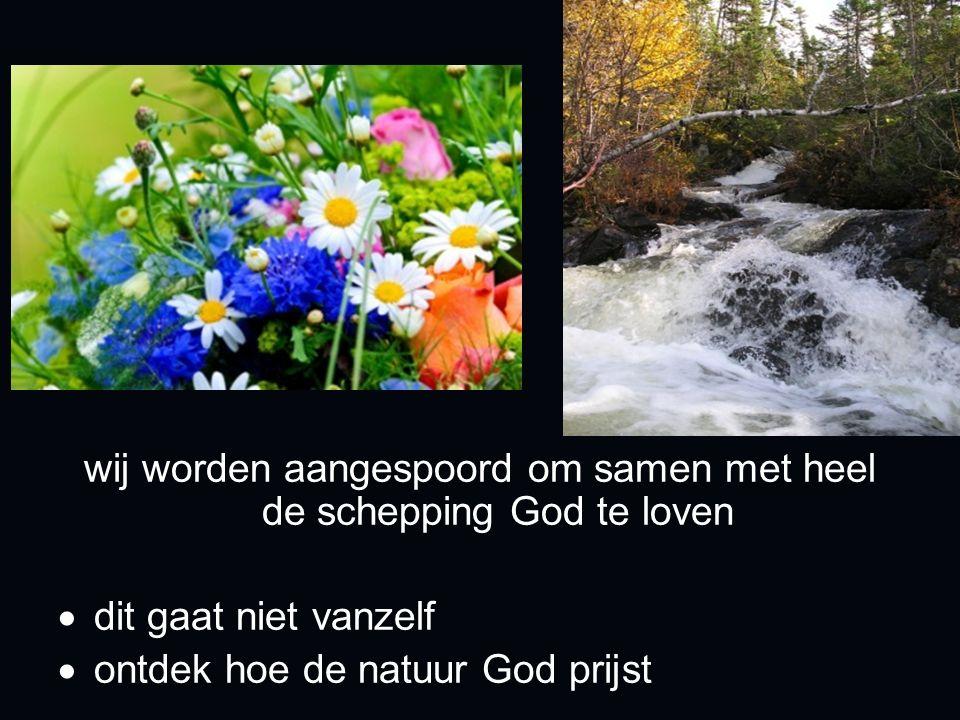 wij worden aangespoord om samen met heel de schepping God te loven  dit gaat niet vanzelf  ontdek hoe de natuur God prijst