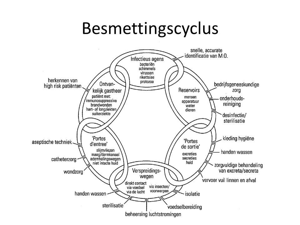 Besmettingscyclus