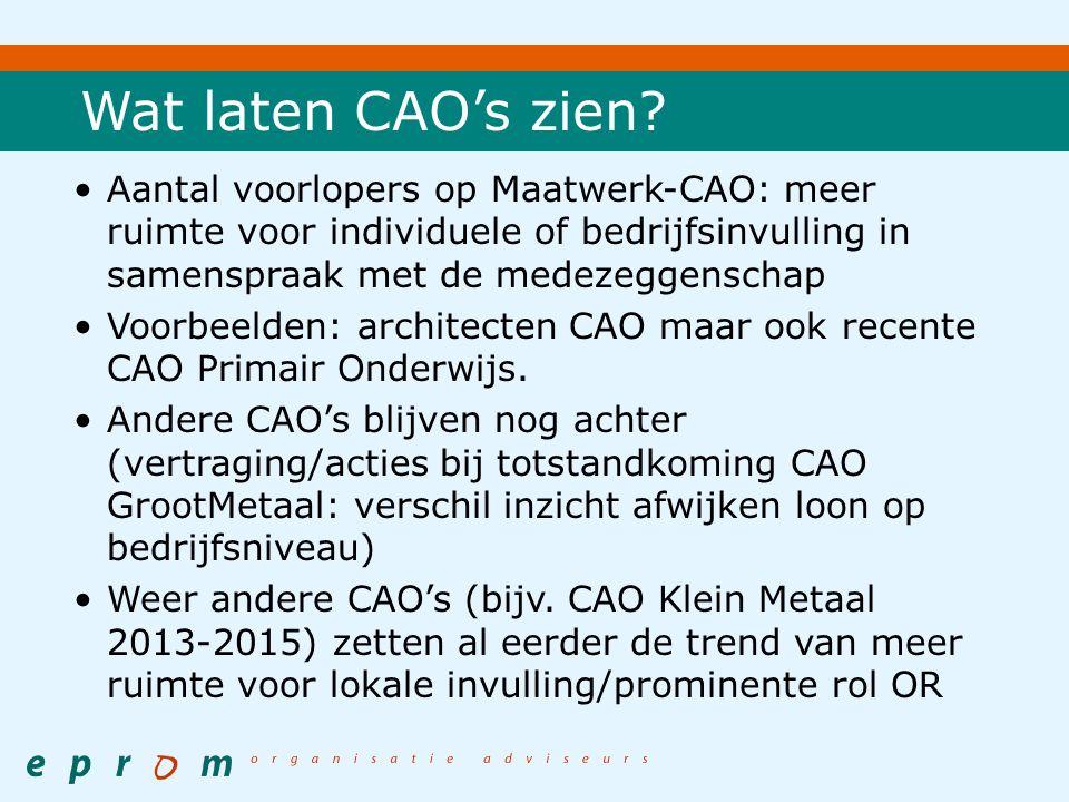 Wat laten CAO's zien.