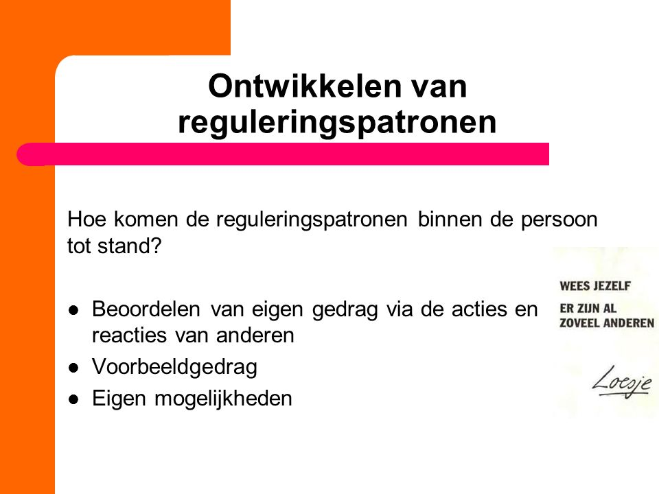 Ontwikkelen van reguleringspatronen Hoe komen de reguleringspatronen binnen de persoon tot stand? Beoordelen van eigen gedrag via de acties en reactie