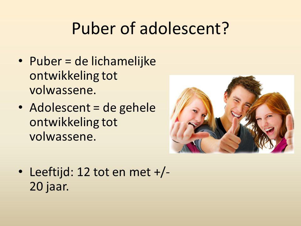 Puber of adolescent.Puber = de lichamelijke ontwikkeling tot volwassene.
