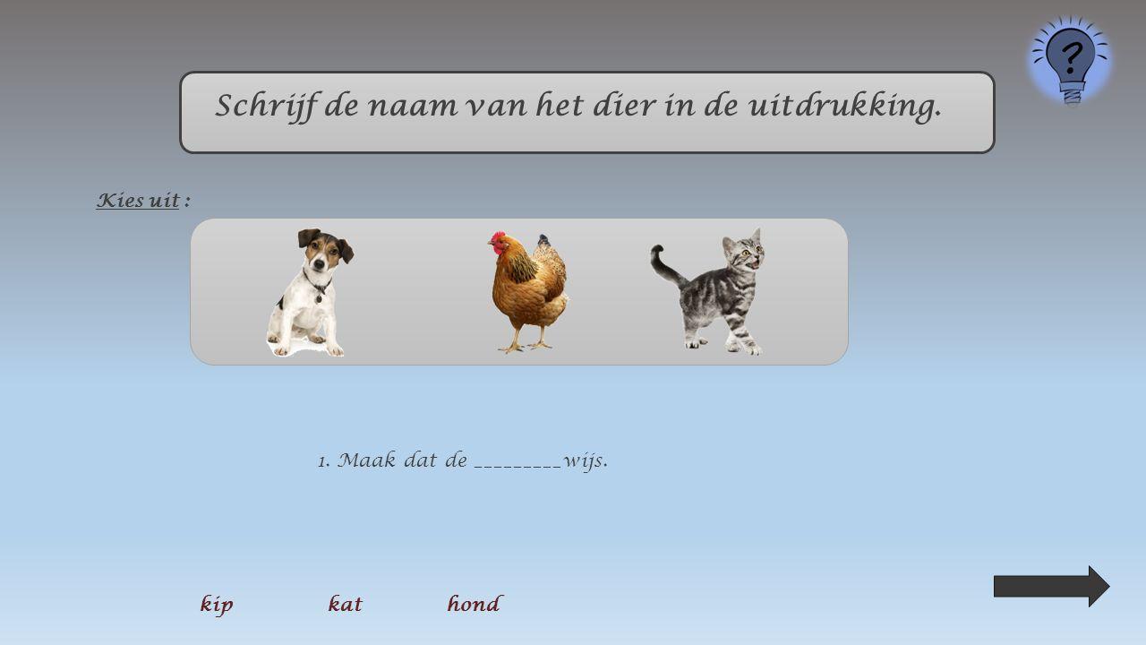 Schrijf de naam van het dier in de uitdrukking. Kies uit : 3. Je praat als een ________zonder kop. kipkat hond
