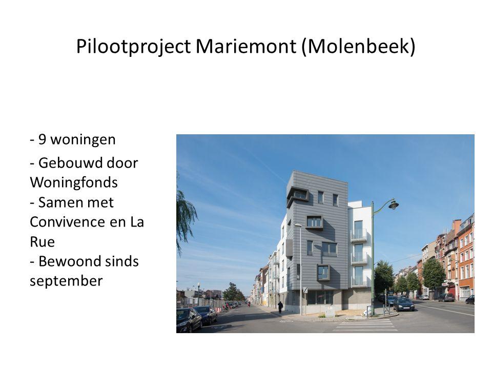 Pilootproject Mariemont (Molenbeek) - 9 woningen - Gebouwd door Woningfonds - Samen met Convivence en La Rue - Bewoond sinds september