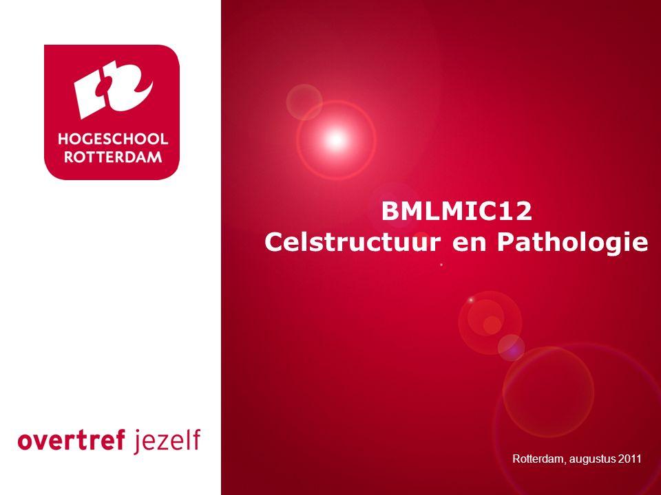 Presentatie titel Rotterdam, 00 januari 2007 BMLMIC12 Celstructuur en Pathologie Rotterdam, augustus 2011