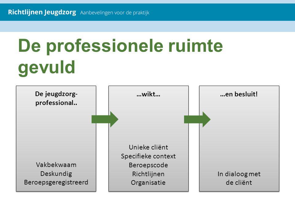 De professionele ruimte gevuld De jeugdzorg- professional.. Vakbekwaam Deskundig Beroepsgeregistreerd …wikt… Unieke cliënt Specifieke context Beroepsc