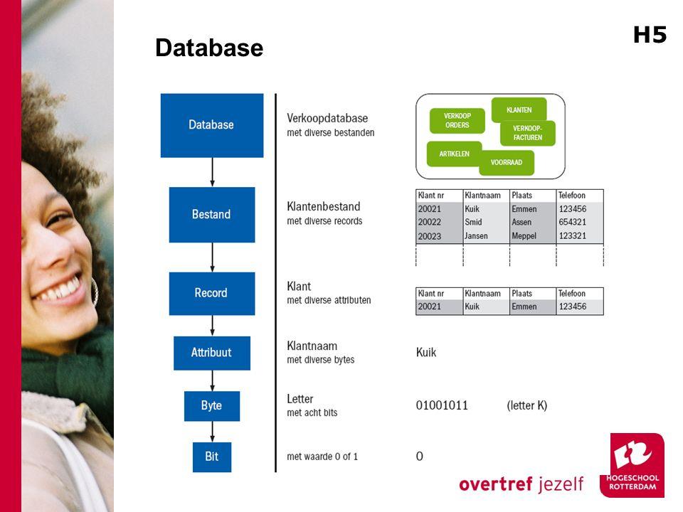 Database H5