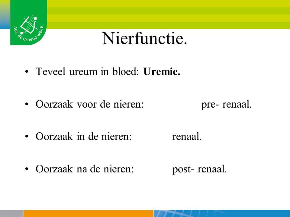 Nierfunctie.Teveel ureum in bloed: Uremie. Oorzaak voor de nieren: pre- renaal.