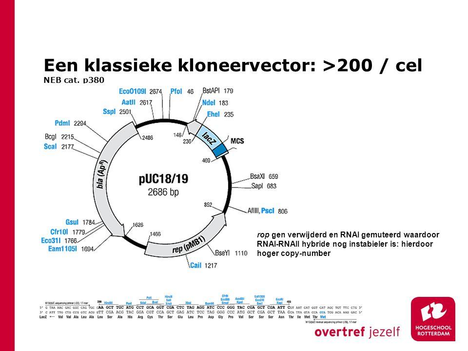Een klassieke kloneervector: >200 / cel NEB cat.