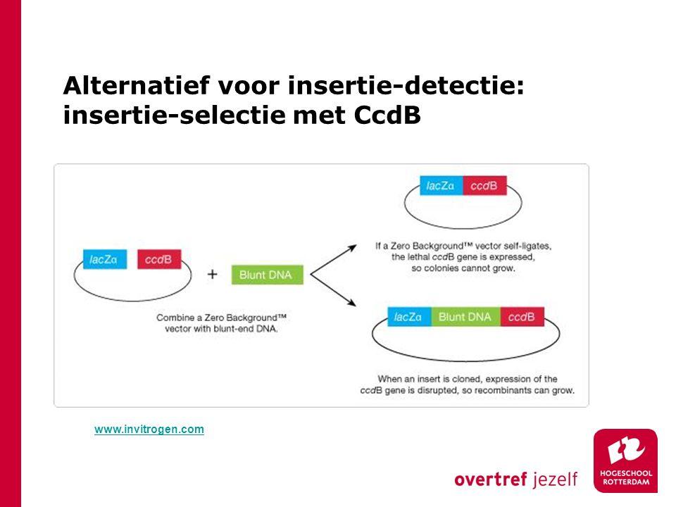 Alternatief voor insertie-detectie: insertie-selectie met CcdB www.invitrogen.com