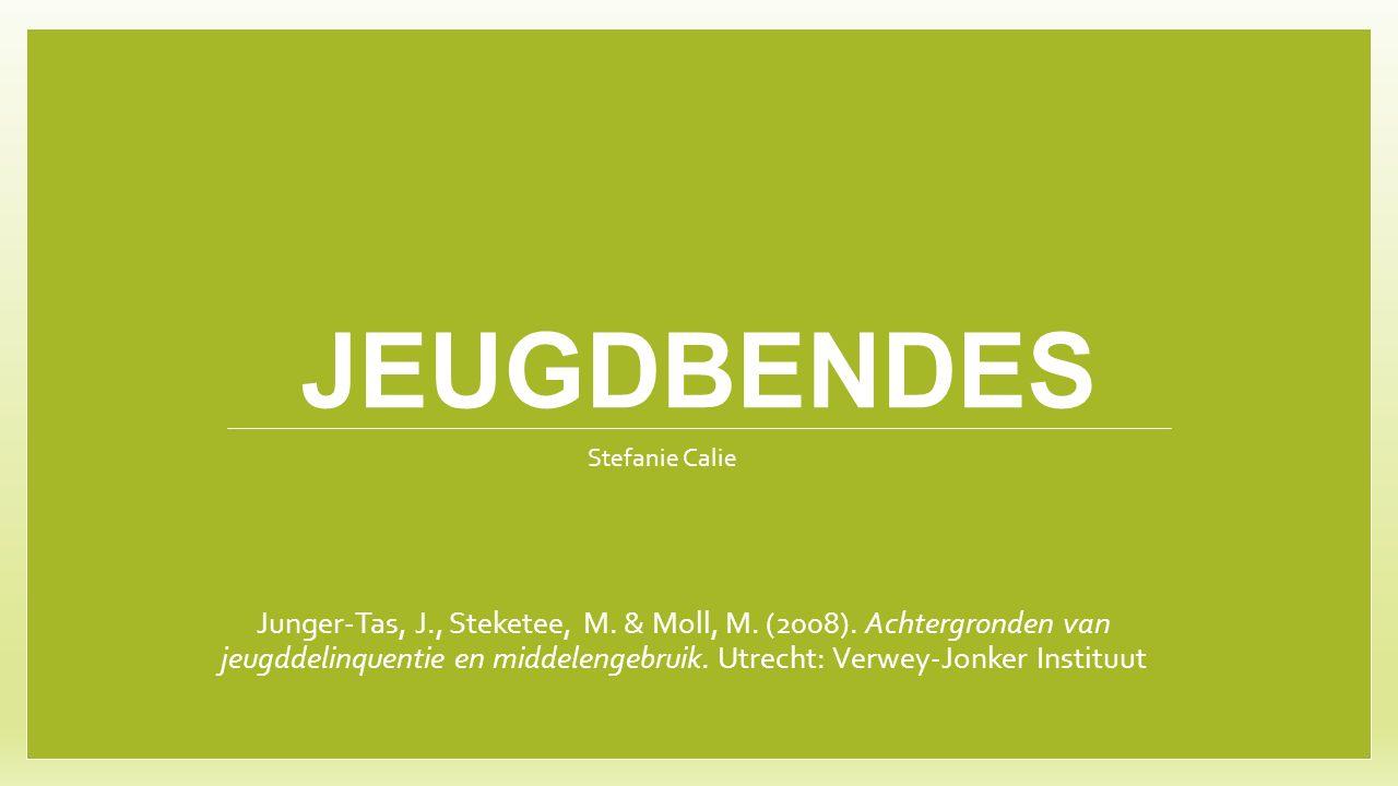 JEUGDBENDES Junger-Tas, J., Steketee, M. & Moll, M. (2008). Achtergronden van jeugddelinquentie en middelengebruik. Utrecht: Verwey-Jonker Instituut S