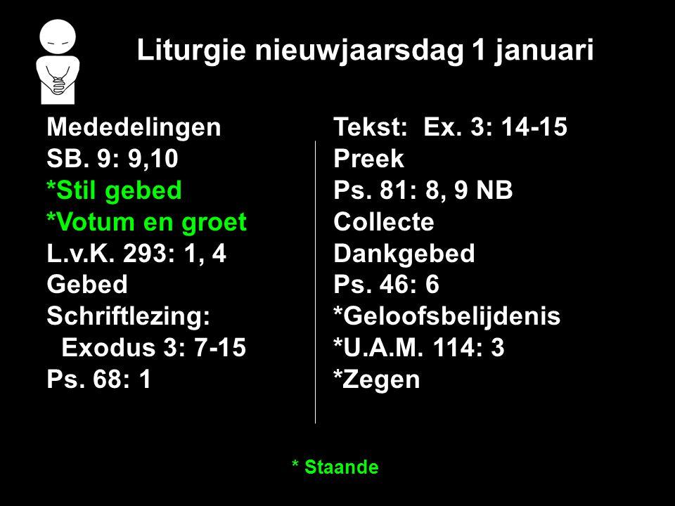Liturgie nieuwjaarsdag 1 januari Mededelingen SB.9: 9,10 *Stil gebed *Votum en groet L.v.K.