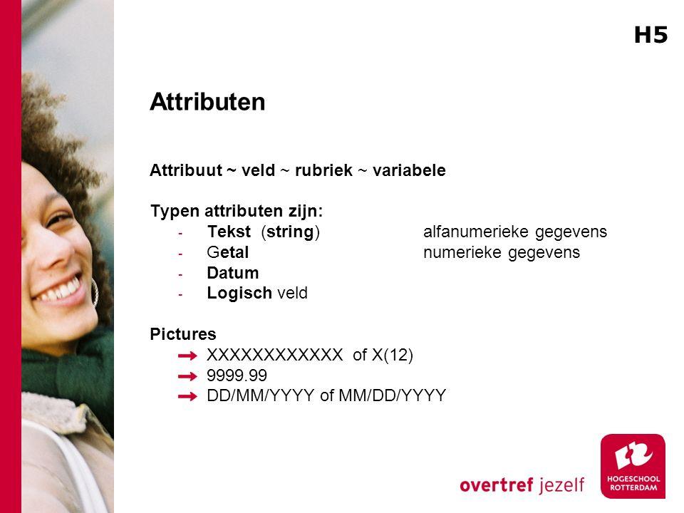 Attributen Attribuut ~ veld ~ rubriek ~ variabele Typen attributen zijn: - Tekst (string) alfanumerieke gegevens - Getal numerieke gegevens - Datum -