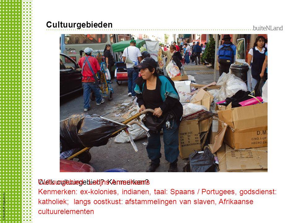 Cultuurgebieden Welk cultuurgebied? Kenmerken?Cultuurgebied: Latijns Amerikaans Kenmerken: ex-kolonies, indianen, taal: Spaans / Portugees, godsdienst