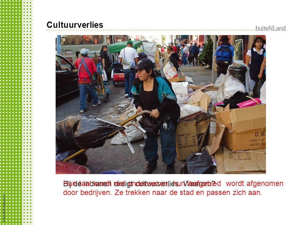 Cultuurverlies Bij de indianen dreigt cultuurverlies. Waarom? Hun taal wordt niet onderwezen, hun leefgebied wordt afgenomen door bedrijven. Ze trekke