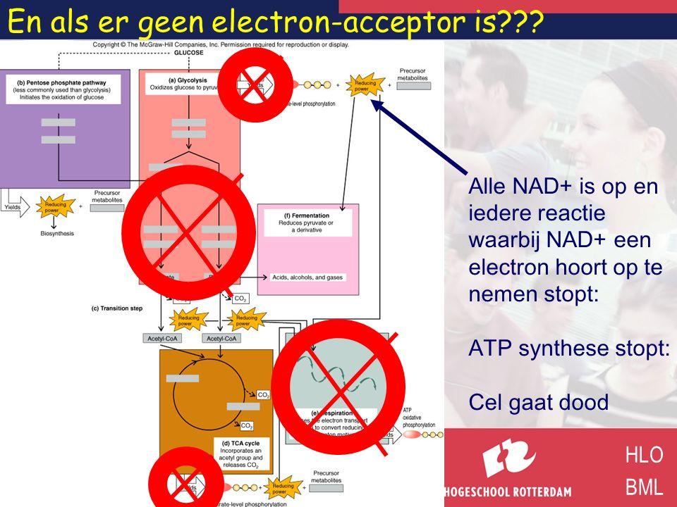 En als er geen electron-acceptor is??? HLO BML Alle NAD+ is op en iedere reactie waarbij NAD+ een electron hoort op te nemen stopt: ATP synthese stopt