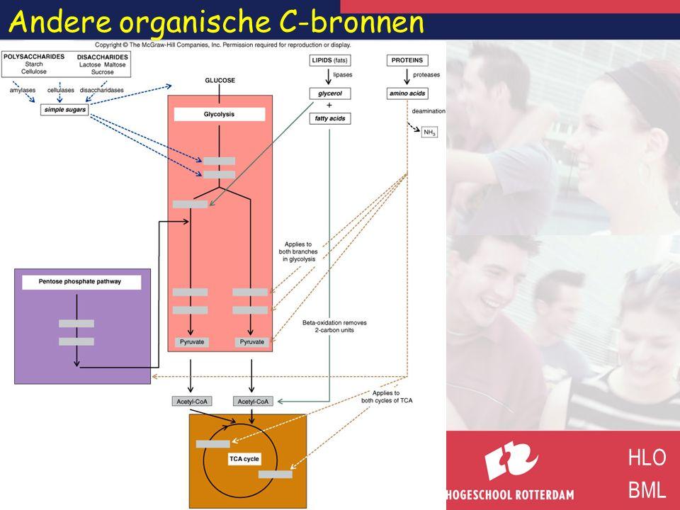 Andere organische C-bronnen HLO BML
