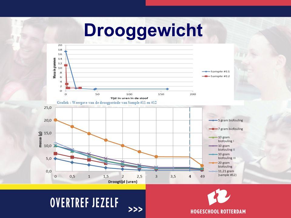 Drooggewicht Grafiek : Weergave van de droogperiode van Sample #11 en #12