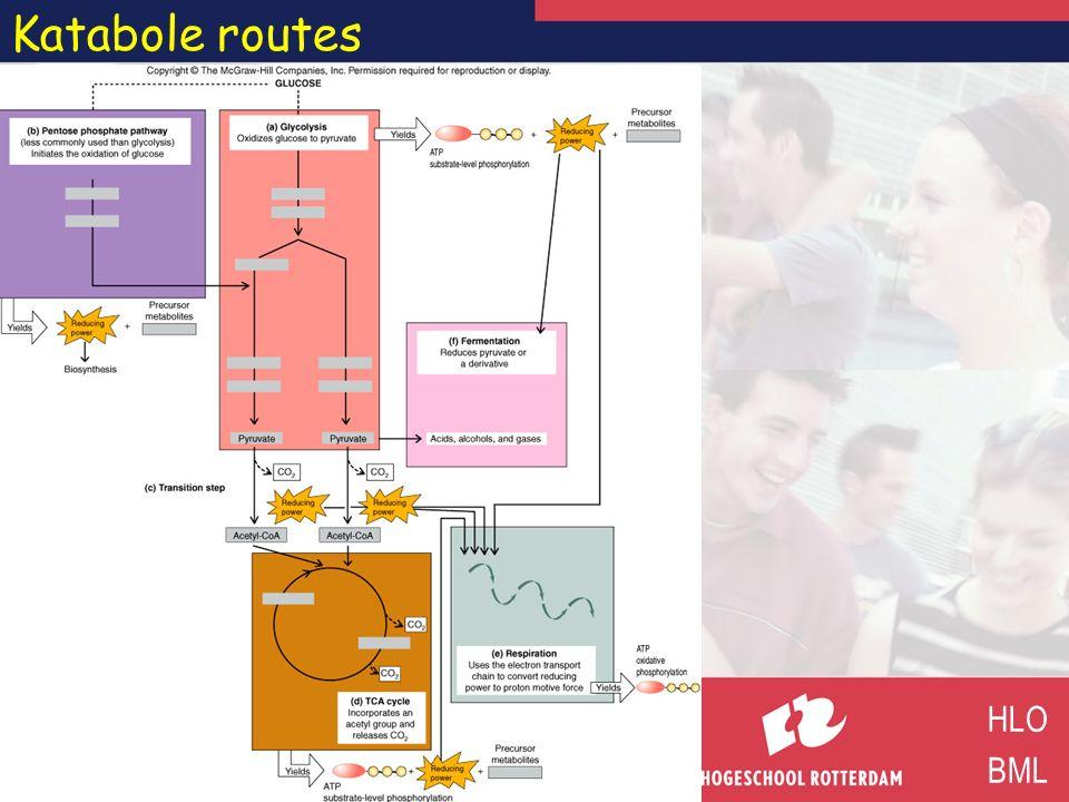 Oxidatie-reductie HLO BML A ox A red e–e– reductie B red B ox e–e– oxidatie