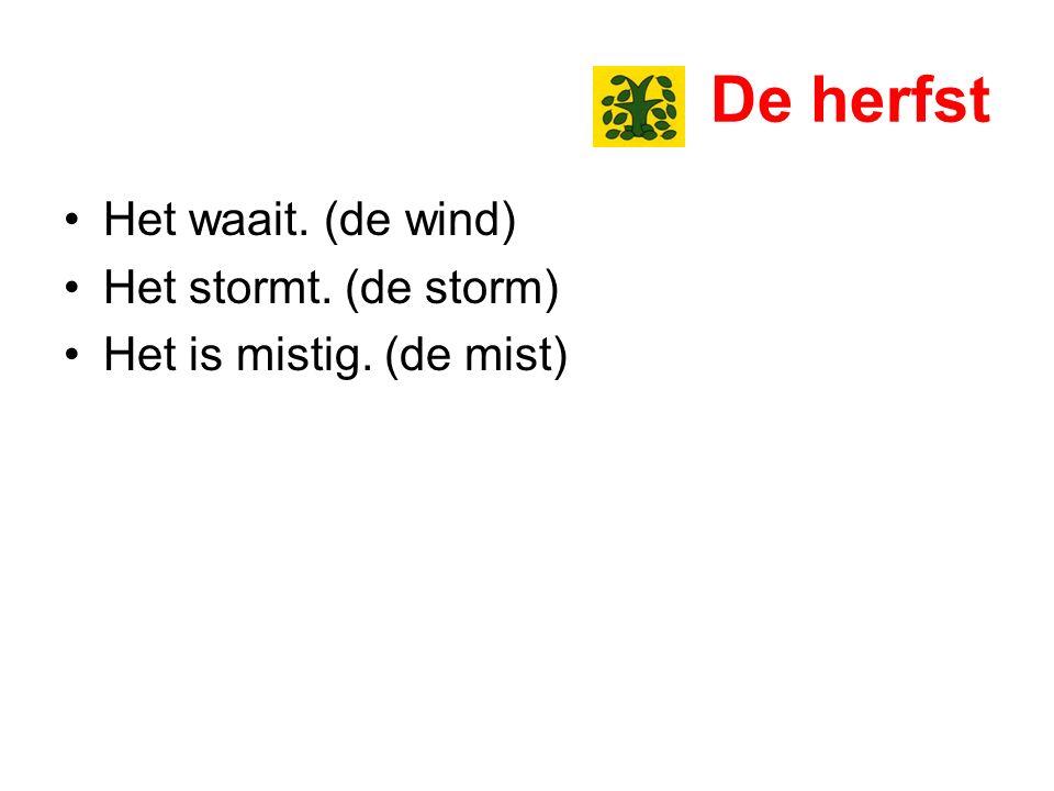 De herfst Het waait. (de wind) Het stormt. (de storm) Het is mistig. (de mist)
