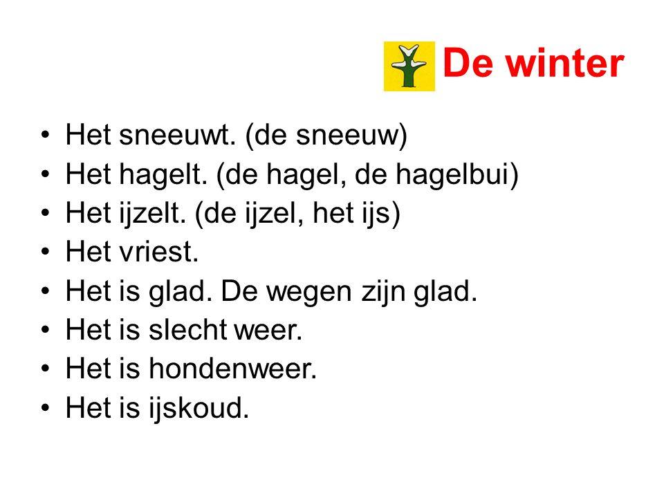 De winter Het sneeuwt. (de sneeuw) Het hagelt. (de hagel, de hagelbui) Het ijzelt. (de ijzel, het ijs) Het vriest. Het is glad. De wegen zijn glad. He