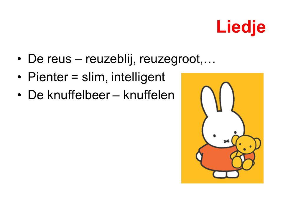 Liedje De reus – reuzeblij, reuzegroot,… Pienter = slim, intelligent De knuffelbeer – knuffelen