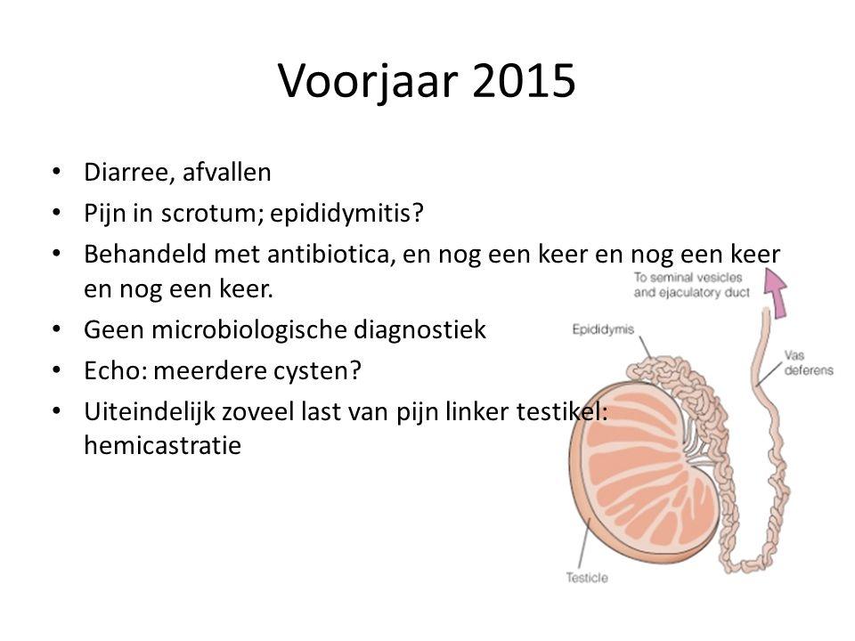 Voorjaar 2015 Diarree, afvallen Pijn in scrotum; epididymitis? Behandeld met antibiotica, en nog een keer en nog een keer en nog een keer. Geen microb