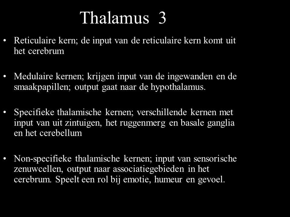 Thalamus 3 Reticulaire kern; de input van de reticulaire kern komt uit het cerebrum Medulaire kernen; krijgen input van de ingewanden en de smaakpapil