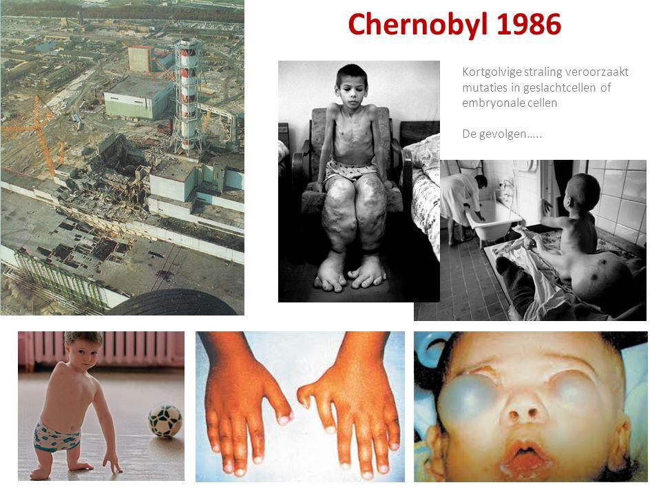 Chernobyl 1986 Kortgolvige straling veroorzaakt mutaties in geslachtcellen of embryonale cellen De gevolgen…..