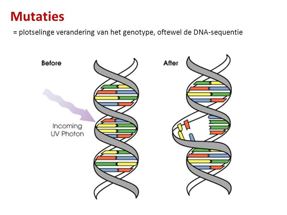 Mutaties = plotselinge verandering van het genotype, oftewel de DNA-sequentie