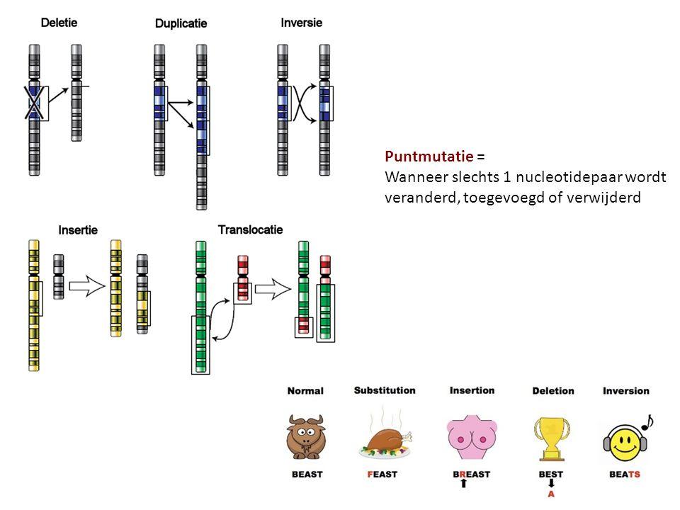 Puntmutatie = Wanneer slechts 1 nucleotidepaar wordt veranderd, toegevoegd of verwijderd