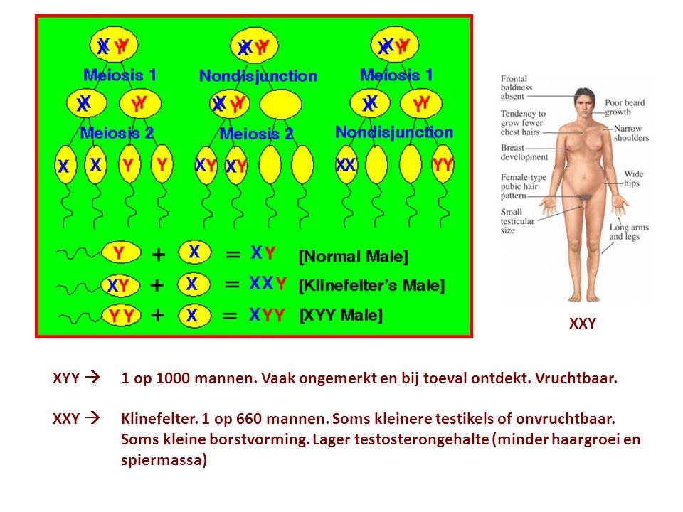 XYY  1 op 1000 mannen. Vaak ongemerkt en bij toeval ontdekt. Vruchtbaar. XXY  Klinefelter. 1 op 660 mannen. Soms kleinere testikels of onvruchtbaar.