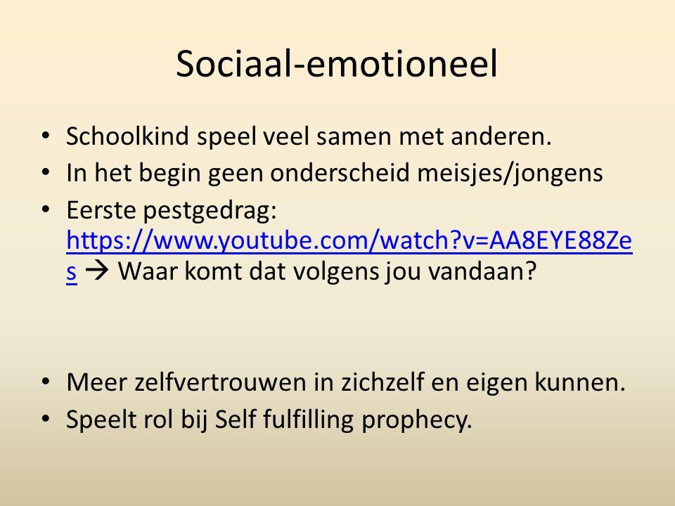 Sociaal-emotioneel Schoolkind speel veel samen met anderen.