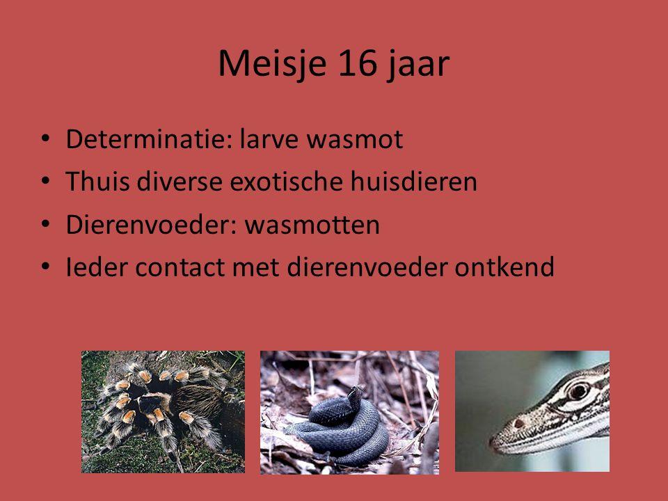 Meisje 16 jaar Determinatie: larve wasmot Thuis diverse exotische huisdieren Dierenvoeder: wasmotten Ieder contact met dierenvoeder ontkend