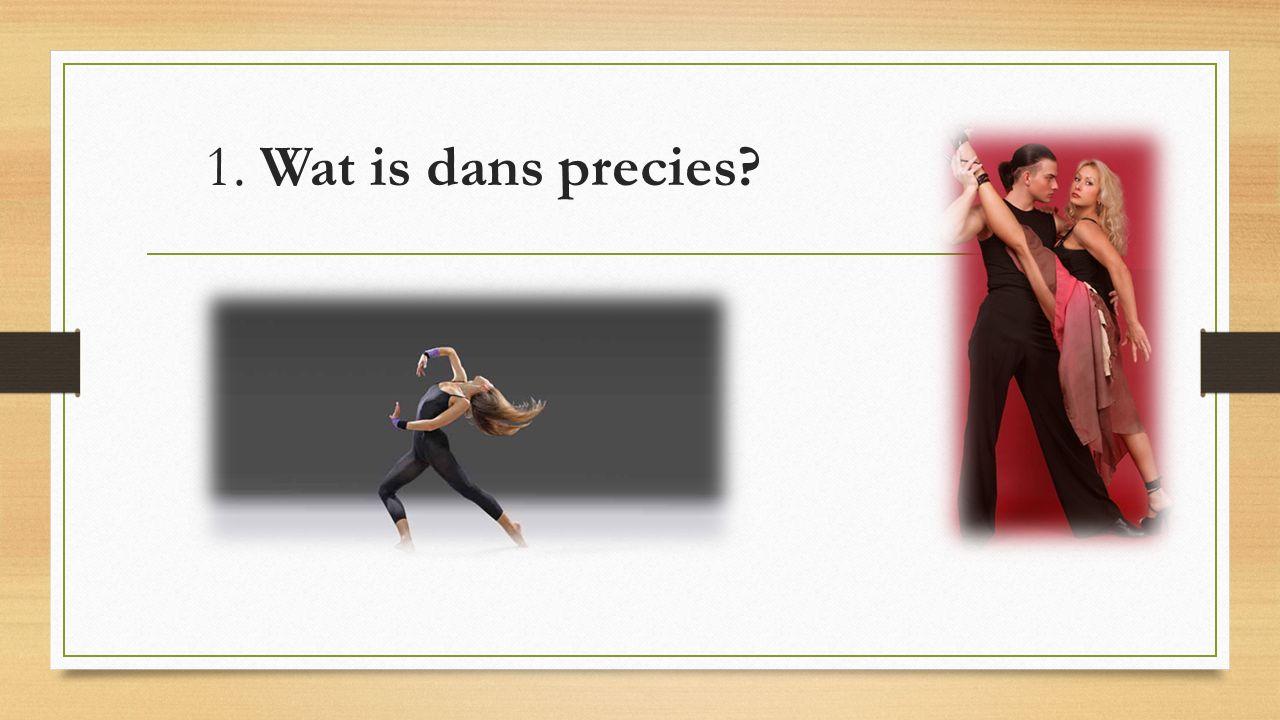 1. Wat is dans precies?