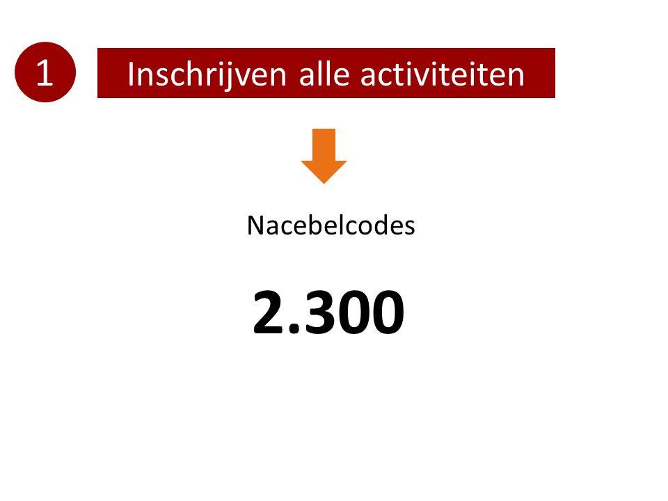 1 Inschrijven alle activiteiten Nacebelcodes 2.300