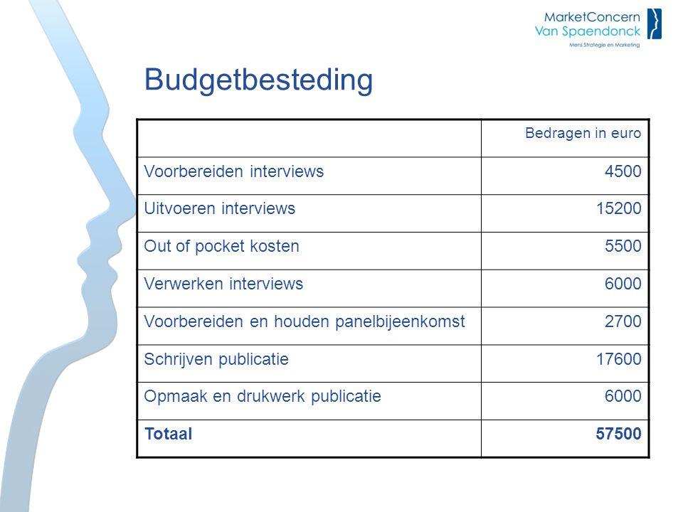 Budgetbesteding Bedragen in euro Voorbereiden interviews4500 Uitvoeren interviews15200 Out of pocket kosten5500 Verwerken interviews6000 Voorbereiden