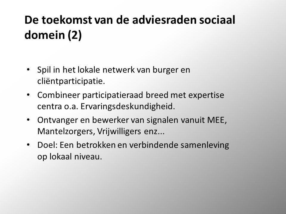De toekomst van de adviesraden sociaal domein (2) Spil in het lokale netwerk van burger en cliëntparticipatie.