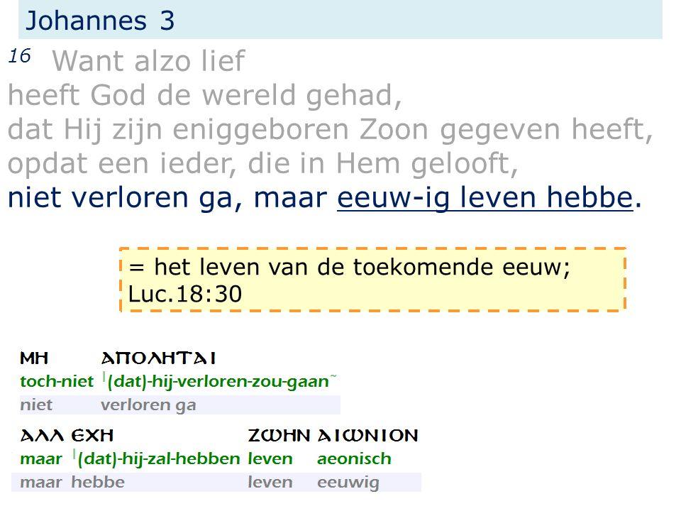 Johannes 3 16 Want alzo lief heeft God de wereld gehad, dat Hij zijn eniggeboren Zoon gegeven heeft, opdat een ieder, die in Hem gelooft, niet verlore