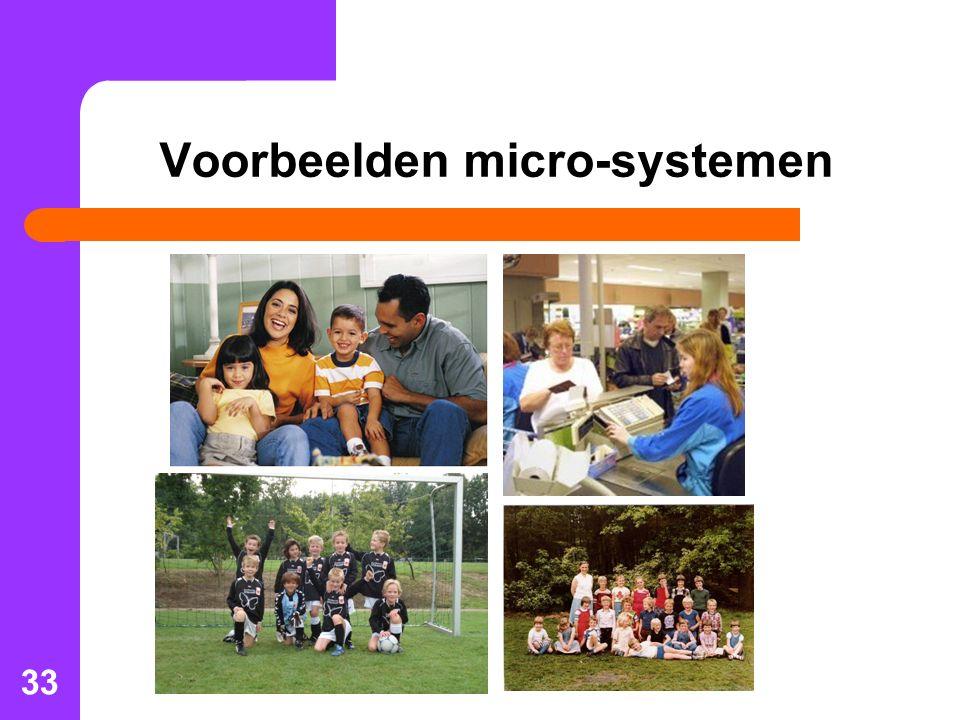 33 Voorbeelden micro-systemen