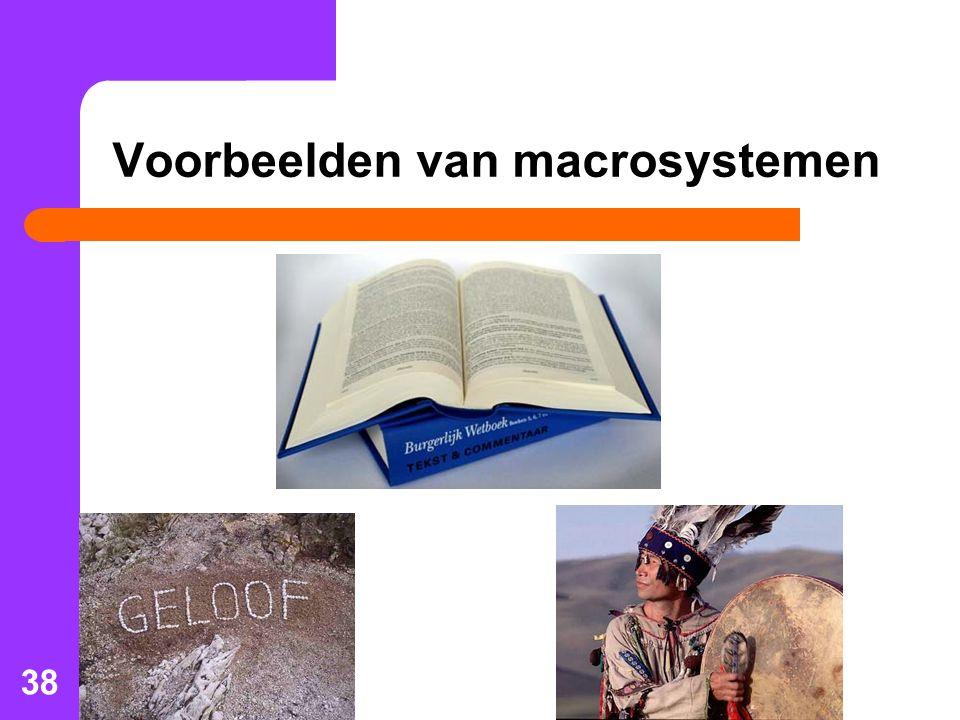38 Voorbeelden van macrosystemen