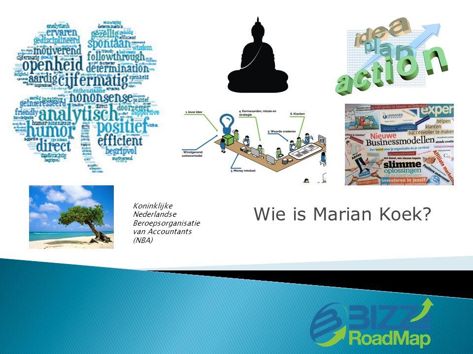 Wie is Marian Koek Koninklijke Nederlandse Beroepsorganisatie van Accountants (NBA)