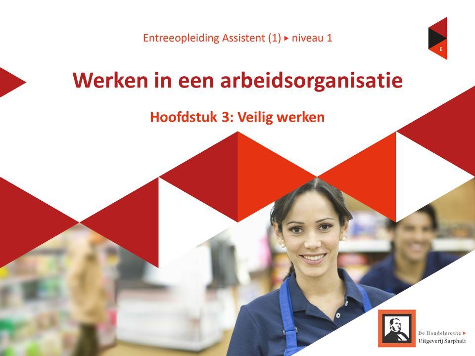 Hoofdstuk 3: Veilig werken Werken in een arbeidsorganisatie