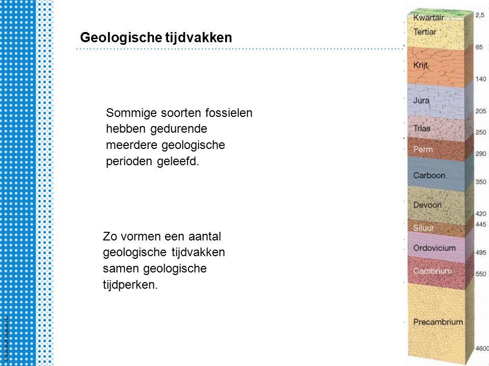 Zo vormen een aantal geologische tijdvakken samen geologische tijdperken.