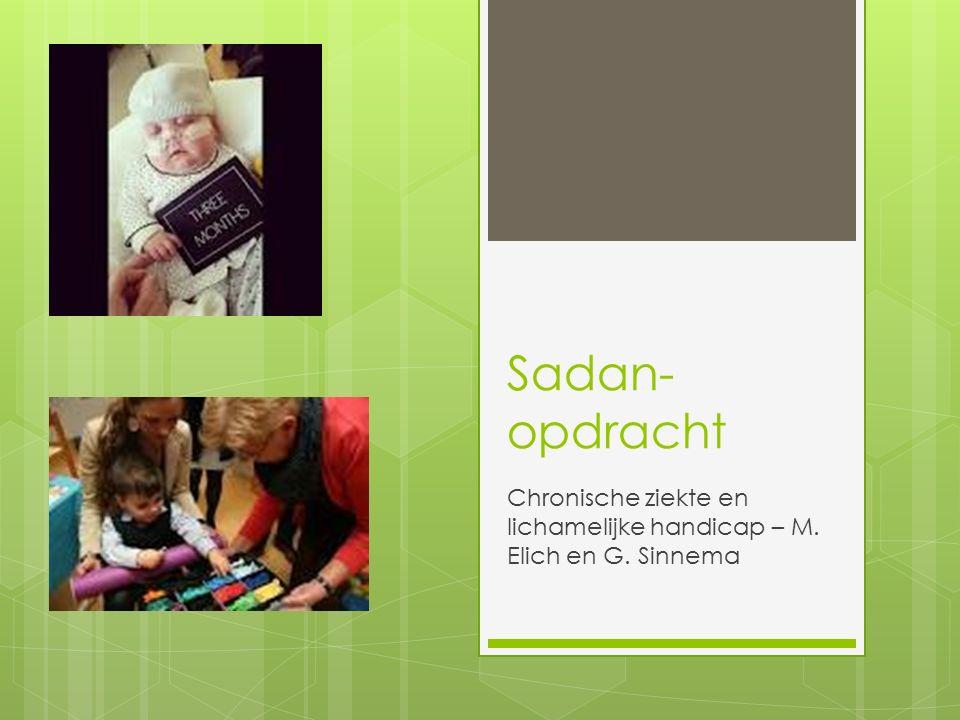 Sadan- opdracht Chronische ziekte en lichamelijke handicap – M. Elich en G. Sinnema