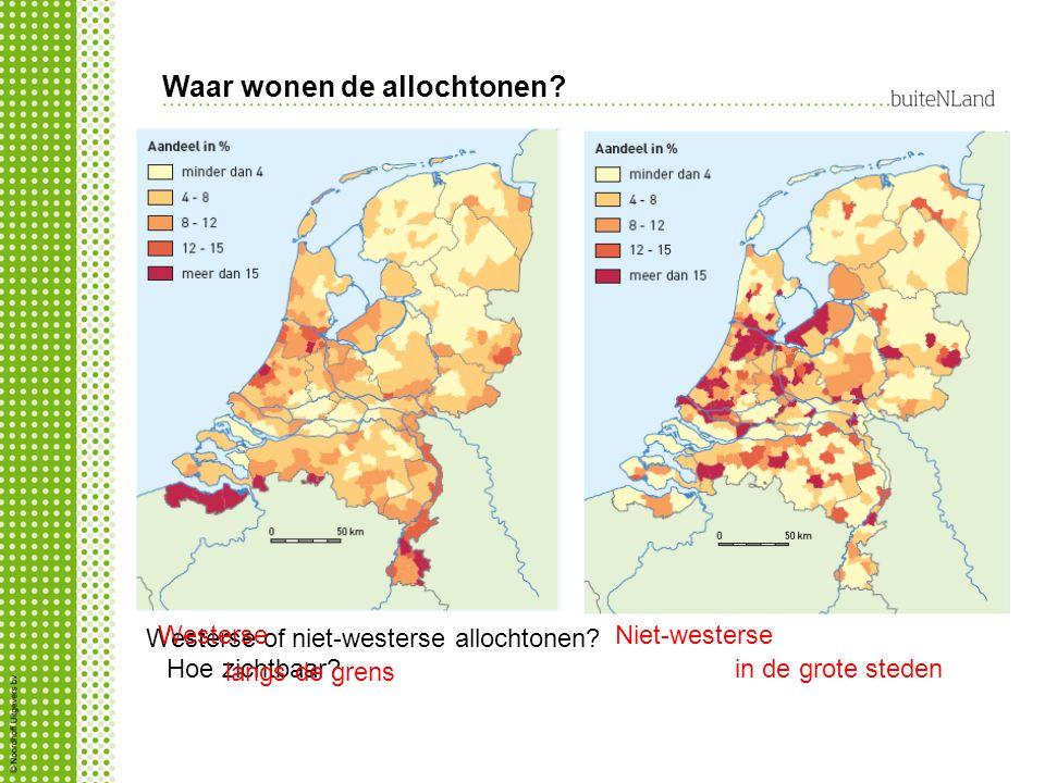 Waar wonen de allochtonen? Westerse of niet-westerse allochtonen? WesterseNiet-westerse Hoe zichtbaar? langs de grens in de grote steden